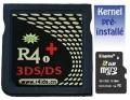 R4i Gold avec logiciel Wood R4 pré-installé